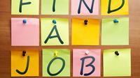 Ingin Kerja di Jabodetabek? Cek 10 Lowongan Ini