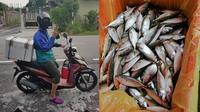 Kisah Pria yang Jualan Ikan. (Sumber: Twitter/ @daniahasrul)