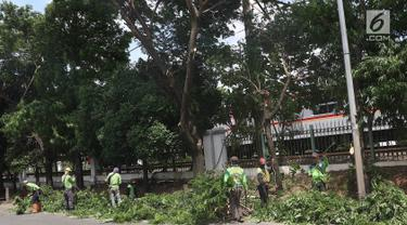 Antisipasi Musim Hujan dan Angin Kencang, Petugas Pangkas Pohon di Lenteng Agung