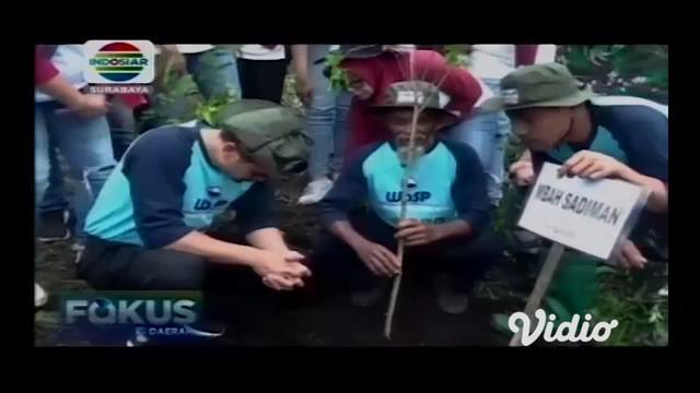 Upaya mengembalikan fungsi hutan yang terbakar beberapa bulan lalu di Gunung Arjuno Pasuruan terus dilakukan warga dan aktivis lingkungan. Mereka menanam ribuan bibit tanaman ditemani Mbah Sadiman peraih Kalpataru dan sejumlah penghargaan lain di bid...