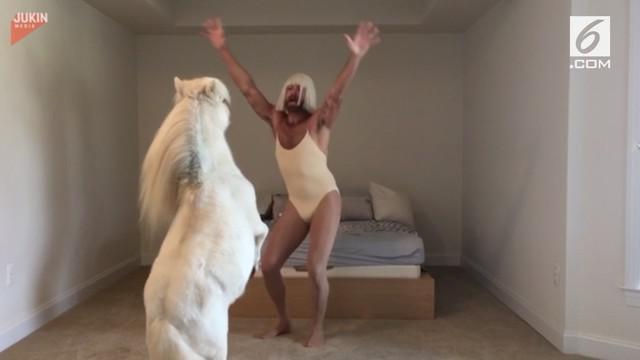 Seorang Pria mengenakan kostum seperti penyanyi pop ternama dan menari bersama hewan kesayangan miliknya.