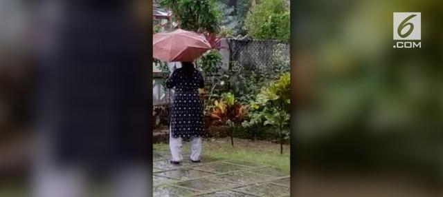 Seorang wanita mengusir ular piton sepanjang 2 meter di India. Ia menggunakan sebuah sapu untuk menakut-nakuti ular tersebut agar menjauh dari rumahnya.