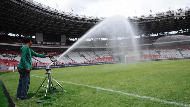 Rumput Stadion Utama GBK dalam...