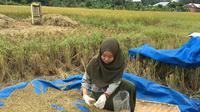 Balai Pengujian Mutu Produk Tanaman dengan secara rutin melakukan pemantauan mutu produk tanaman.