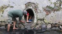 Petugas Animal Rescue berusaha menyelamatkan seekor anjing yang terjebak di gorong-gorong kali Gresik, Menteng, Jakarta Pusat, Rabu (23/5). Anjing ini terjebak selama 3 hari dan dibawa ke tempat penampungan. (Liputan6.com/Arya Manggala)
