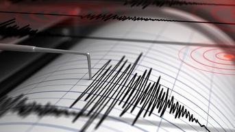Lindu M 4,8 dan Gempa Susulan M 3,8 Goyang Karangasem Bali