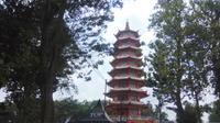 Pulau Kemaro yang dikelilingi pohon rimbun yang tinggi dan beberapa bangunan peribadatan umat Konghuchu (Liputan6.com / Nefri Inge)