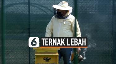 THUMBNAIL lebah