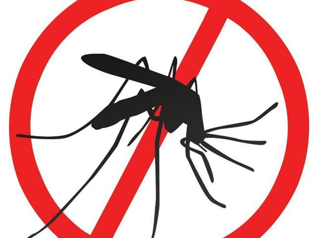 029321900 1538389932 mosquito