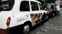 Ratusan taksi di London, Inggris mempromosikan pariwisata Indonesia.