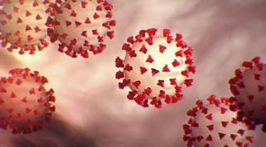 Gambar ilustrasi Virus Corona COVID-19 ini diperoleh pada 27 Februari 2020 dengan izin dari Centers For Desease Control And Prevention (CDC). (AFP)