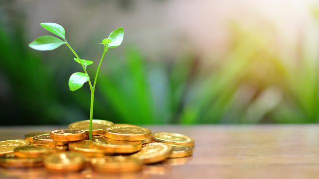 Harga Emas Bakal Terus Naik Dalam Jangka Panjang Waktunya Investasi Bisnis Liputan6 Com