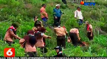 Ratusan anggota Pramuka tingkat pelajar SMP dan SMA perwakilan dari berbagai kota di Jawa Timur meluangkan waktu liburan Natal dan Tahun Baru untuk menanam pohon di lereng Gunung Bromo.