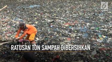 Sebanyak 300 ton sampah telah diangkut dari kawasan hutan mangrove, pembersihan dilakukan petugas Dinas Kebersihan  dan Polsek Sunda Kelapa.