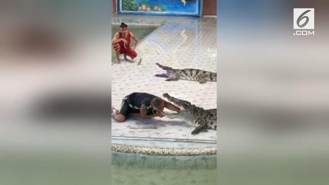 Ini adalah saat-saat mengerikan dimana seekor buaya menggigit tangan seorang pawang di hadapan puluhan penonton. Insiden yang terjadi di kebun binatang Phokkathara, Chiang Rai, Thailand ini membuat seluruh penonton shock berat.