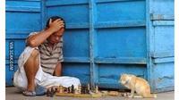 6 Momen Kocak Bapak-Bapak saat Main Catur Ini Bikin Tepuk Jidat (sumber: 1cak.com)