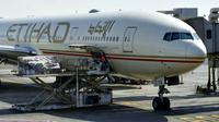 Penggugat menyebutkan bahwa penumpang yang terlalu gemuk yang duduk di sebelahnya dalam penerbangan Etihad telah menyebabkan sakit punggung.