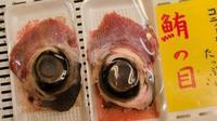Mata ikan tuna yang dipercaya bisa bikin pintar. Source: http://sawyerhartmanfilms.com