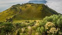 Gunung Merbabu dikenal sebagai gunung yang memiliki pemandangan paling indah di Jawa Tengah (shutterstock.com)