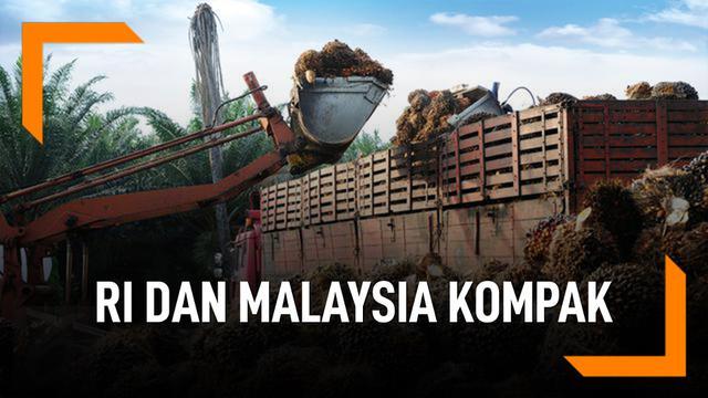 RI dan Malaysia Kompak, Protes Ke UE Soal Minyak Sawit
