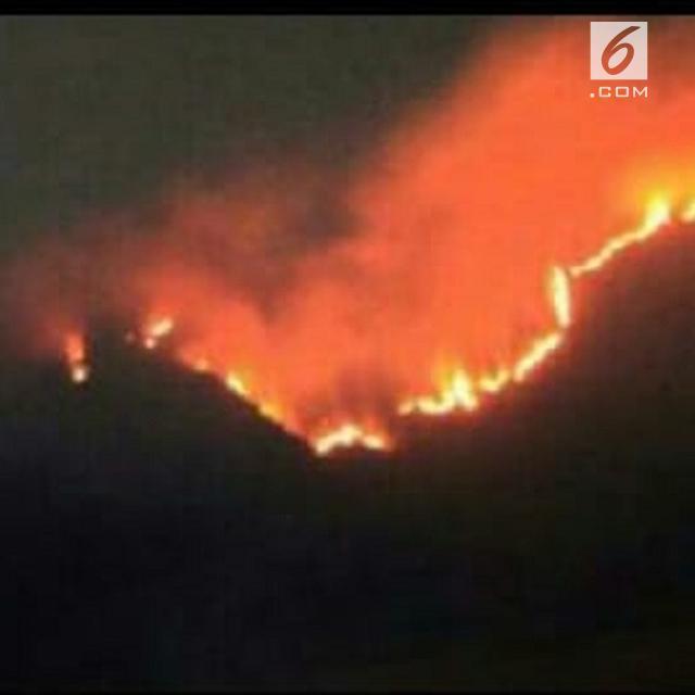 Gunung Sumbing Terbakar, Pendakian Ditutup - Regional