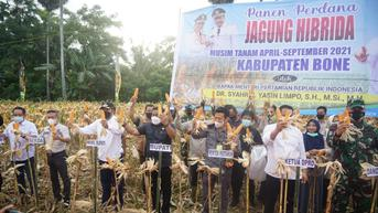 Atasi Harga Pakan, DPR Minta Kemendag Jangan Gegabah Impor Jagung