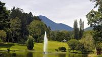 Ada beberapa ketentuan untuk berkunjung ke Kebun Raya Cibodas telah dibuka kembali sejak 25 Agustus 2021 (dok.instagram/@kebunrayacibodaslipi/https://www.instagram.com/p/Ba5165clXH9/Komarudin)