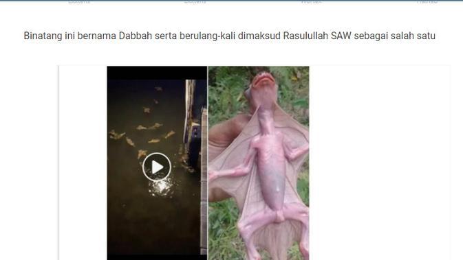 Cek Fakta Liputan6.com menelusuri klaim foto Dabbah hewan tanda kiamat