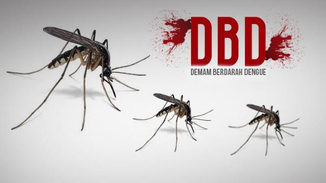 Image result for image Selain NTT, Nyawa 12 Warga Kediri Melayang karena DBD