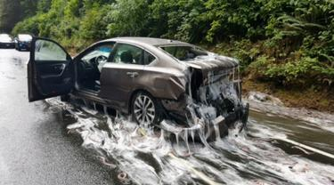 Sebuah mobil mengalami kerusakan dan dipenuhi lendir usai truk pengangkut 3.402 kilogram belut terbalik di jalan raya Highway 101, Oregon, Kamis (13/7). Kejadian ini seketika mengubah jalan raya menjadi licin dan lengket. (Oregon State Police via AP)