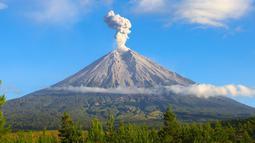 Gunung Semeru merupakan gunung tertinggi di Pulau Jawa, dengan puncaknya Mahameru, 3.676 meter dari permukaan laut (mdpl). Gunung Semeru terletak di Kabupaten Malang dan Kabupaten Lumajang, di Jawa Timur kini berstatus waspada. (Istimewa)