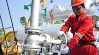 Pertamina telah menyepakati penjualan gas bumi untuk tiga sektor utama yakni pupuk, baja dan industri.