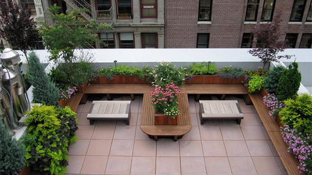 desain rooftop tanaman hias