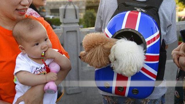 Bayi dengan Anjing.