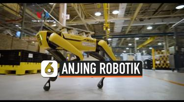 anjing robotik