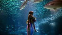 Mahasiswi biologi laut Brasil Isabela Cardoso (21) berenang seperti putri duyung di Rio de Janeiro Aquarium, Brasil (14/1). Aksi Isabela tersebut untuk memprotes bahaya pencemaran laut dalam kehidupan laut di Rio de Janeiro. (AFP Photo/Mauro Pimentel)