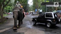 Pengunjung berkeliling dengan gajah di Taman Safari Indonesia (TSI) di Cisarua, Bogor, Kamis (20/5/2021). Walaupun libur lebaran sudah berakhir wiasatawan masih memadati kawasan TSI Bogor dengan menerapkan protokol kesehatan dan membatasi pengunjung hingga 50 persen. (merdeka.com/ Arie Basuki)