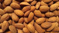 Ilustrasi almond (dok.unsplash)