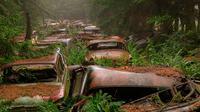 Selama 70 tahun, tumpukan ratusan bangkai kendaraan kuno di hutan Belgia ini menimbulkan kesan angker.