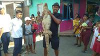 Seekor biawak besar ditangkap karena sering memakan hewan ternak milik warga Kampung Paguyuban Kota Cirebon. Foto : (Liputan6.com / Panji Prayitno)