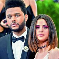 """""""Wasted times I spent with someone else/ She wasn't even half of you/"""" adalah lirik yang menyindir Selena. Ia mengatakan Selena tak pernah lebih baik dari Bella. (Deccan Chronicle)"""