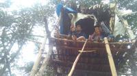 Dua mahasiswa asal Kabuapten Mamasa yang mengikuti kuliah online diatas rumah pohon