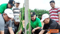 Citizen6, Pulung Kencana: Kebun Agrowisata merupakan salah satu ikon yang sedang dibangun oleh Pemerintah Kabupaten Tulang Bawang Barat, yang akan menjadi tempat rekreasi sekaligus praktik budidaya pertanian. (Pengirim: Humas TBB)