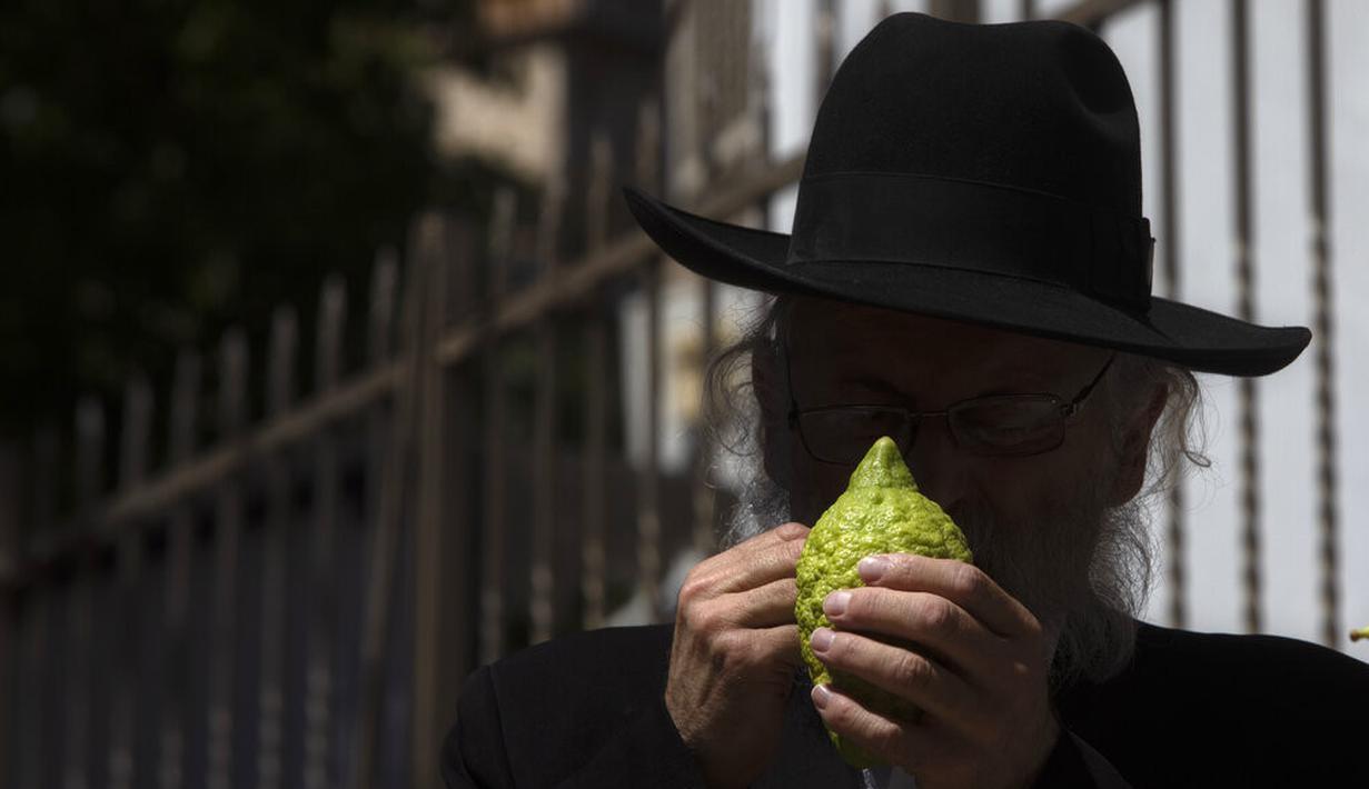 Pria Yahudi ultra-Ortodoks memeriksa etrog, buah jeruk seperti lemon, untuk noda untuk menentukan apakah dapat diterima secara ritual, sebelum membelinya sebagai sebagai simbol pada hari raya Yahudi Sukkot, di Yerusalem (19/9/2021). (AP Photo/Sebastian Scheiner)