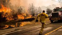 Petugas pemadam kebakaran berlari memindahkan truknya karena api mulai menjalar dengan cepat di kawasan Rocky Fire, San Francisco, California, Kamis (30/7/2015). Kewaspadaan tingkat tinggi diperlukan agar tidak menjadi korban. (REUTERS/Max Whittaker)