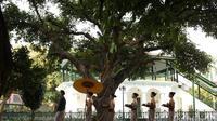 Hotel Royal Ambarrukmo Yogyakarta menawarkan sensasi berbeda kepada para tamunya lewat wisata budaya yang digelar rutin setiap Jumat sore (Liputan6.com/ Switzy Sabandar)
