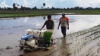 Dari kegiatan penyewaan combine harvester, UPJA Taju Jawa mampu mendapatkan penghasilan (kotor) sebesar Rp 45 juta-50 juta/musim panen.