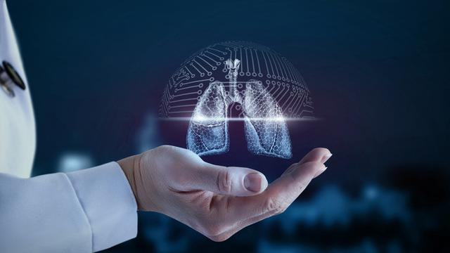 5 Fungsi Paru-paru Manusia dan Asupan Makanan Untuk Menjaga Tetap Sehat - Health Liputan6.com