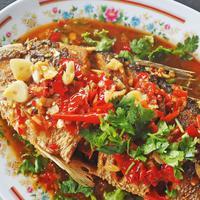 ilustrasi ikan saus pedas/copyright by Chananchida Ch (Shutterstock)