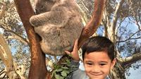 Rafathar Malik Ahmad sedang bersama koala di Australia (Dok.Instagram/@raffinagita1717/https://www.instagram.com/p/Byg7NgAhB-e/Komarudin)